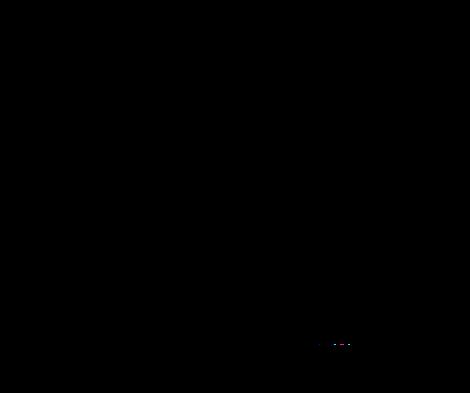 Logo_Schriftzug_Transparent