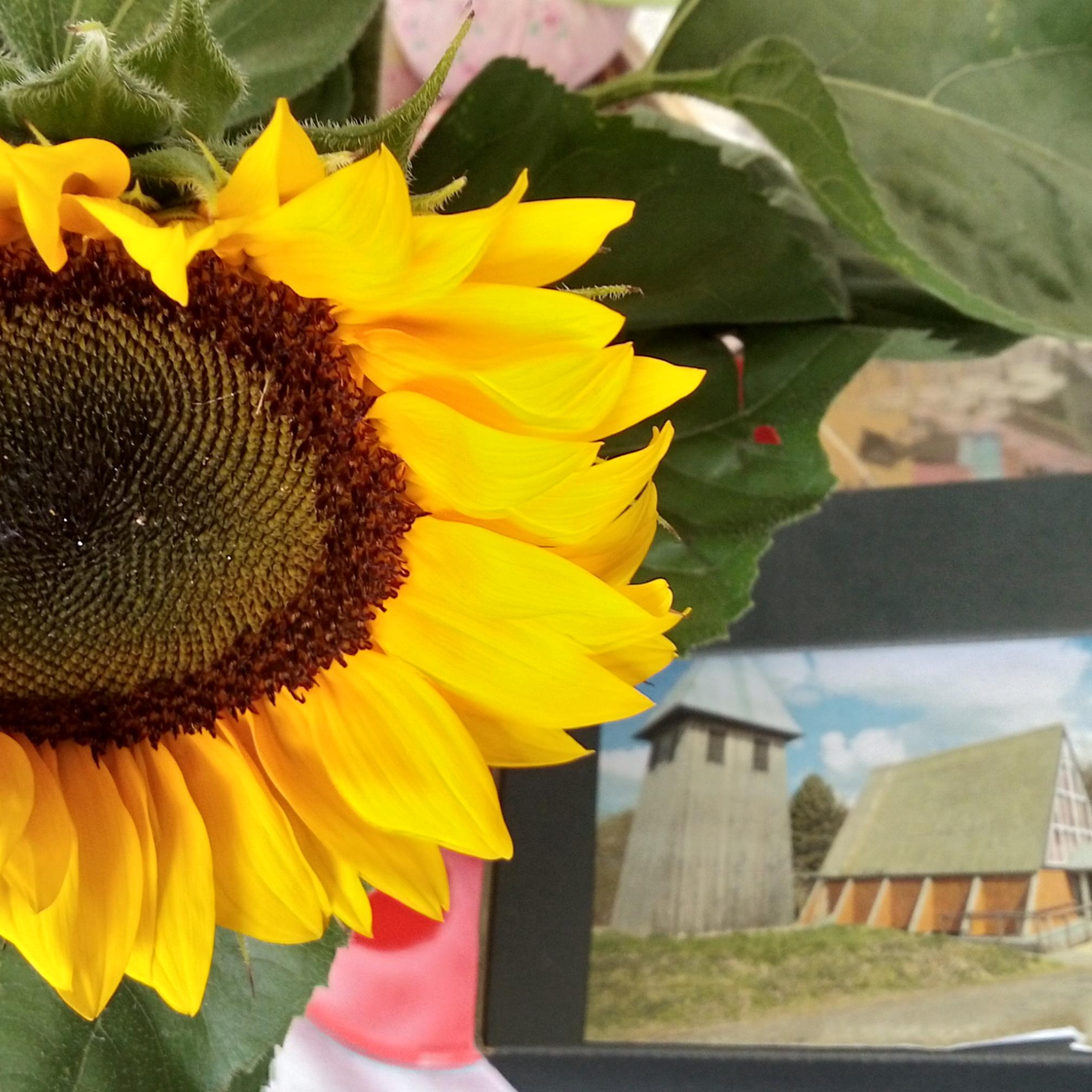Vereinstag_Sonnenblume_Kirche_25.08.19